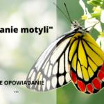 """""""Łapanie motyli"""" (opowiadanie)"""