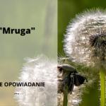 """""""Mruga"""" (moje opowiadanie)"""